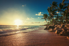 Landscape of paradise tropical island beach royalty free stock photography