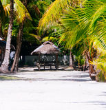 Landscape of paradise tropical island with palms, cottages and white sand beach Stock Photo