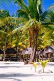 Landscape of paradise tropical island with palms, cottages and white sand beach Stock Photography