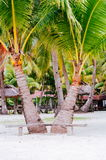 Landscape of paradise tropical island with palms, cottages and white sand beach Stock Images