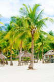 Landscape of paradise tropical island with palms cottages and white sand beach Royalty Free Stock Photos