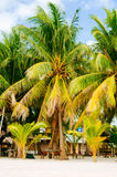 Landscape of paradise tropical island with palms, cottages and white sand beach in Asia Stock Photography