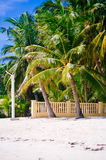 Landscape of paradise tropical island with palms and white sand beach Royalty Free Stock Images