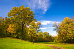 Landscape park Stock Photography