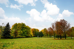 Landscape in the park with autumn trees Royalty Free Stock Photography
