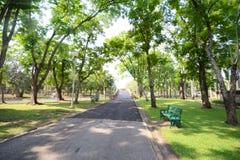 Landscape of park Stock Image