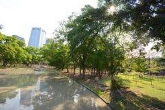 Landscape of park Stock Images
