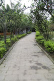 The landscape in a park, chengdu, china Stock Images