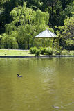 Landscape park Stock Image
