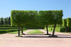 Landscape park of Peterhof Stock Photo