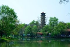 The landscape in the park. In spring, the landscape in the park. It was taken in Wuhan Liberation Park Stock Photography
