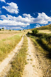 Landscape with path Stock Images