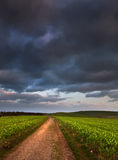 Landscape path through fields dramatic sky Royalty Free Stock Image