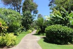 Landscape. Pathway through beautiful landscape on Hawaii Stock Photo