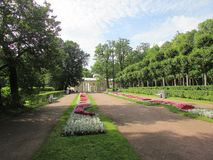 The landscape of the Pavlovsk Park Royalty Free Stock Images