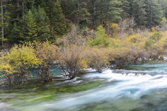 Landscape of Pearl Shoal waterfall at Jiuzhaigou, Sichuan, China Royalty Free Stock Photo