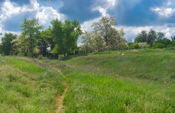 Landscape with pedestrian path to remote house in Ukrainian village Kamians`ke, Zaporizhzhia Oblast Stock Photo