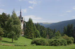 Landscape with Peles castle Royalty Free Stock Image