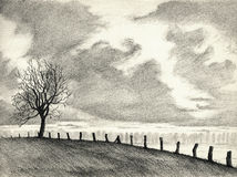 Landscape pencil drawing. A pencil drawing of a landscape with a solitaire tree Royalty Free Stock Images