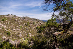 Landscape of Peneda geres national park in Portugal Royalty Free Stock Photos