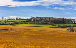 Landscape in the Perche Region of France Stock Image