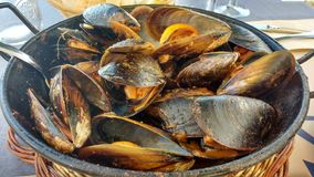 Landscape. Perfect ration of muscles in spain stock photo