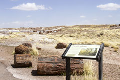 Landscape at Petrified Forest National Park Royalty Free Stock Images