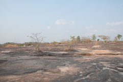 Landscape of Pha Taem National Park Royalty Free Stock Photos