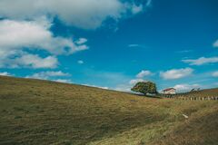Landscape Photo of 1 Tree and House Royalty Free Stock Photos