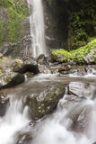 Landscape photo. beautiful waterfall in rainforest Royalty Free Stock Images