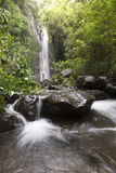 Landscape photo. beautiful waterfall in rainforest Stock Photography