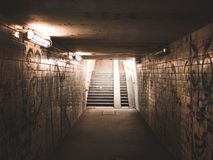 Landscape Photo of Concrete Stairs Stock Photography