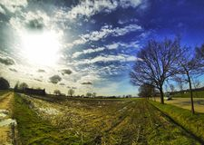 Landscape photo of a Field in the Sun Royalty Free Stock Photo