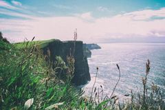Landscape Photo of Green Grassy Cliff Royalty Free Stock Images