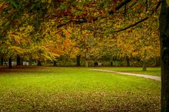 Beauty of autumn landscapes. Landscape photo of a park in autumn season Royalty Free Stock Images
