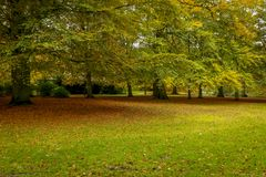 Beauty of autumn landscapes. Landscape photo of a park in autumn season Royalty Free Stock Photo
