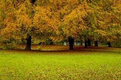 Beauty of autumn landscapes. Landscape photo of a park in autumn season Stock Photography