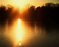 A landscape photo of a river with the sunset making a bright reflection on the water. A landscape with silhouetted trees and a sunset making a reflection on the Stock Photos
