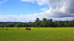 Landscape photo of rolled hay on a field Royalty Free Stock Photos