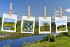 Landscape photographs hanging on clothesline. 3D image Stock Image