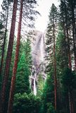 Landscape Photography of Green Trees and Water Falls Royalty Free Stock Photos