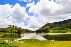 Landscape Photography of Lake Stock Photography