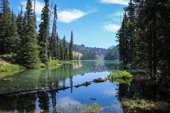 Landscape Photography of Lake Surrounded by Trees Stock Images