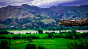 Landscape Photography of Mountains and Trees Royalty Free Stock Photo