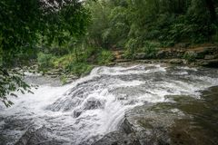 Landscape Photography of River in Forest Stock Photography