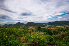 Landscape Phupapoh at Loei Thailand Stock Photos