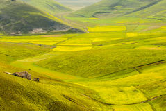 Landscape of Piano di Castelluccio Royalty Free Stock Photo