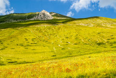 Landscape of Piano di Castelluccio Stock Photos