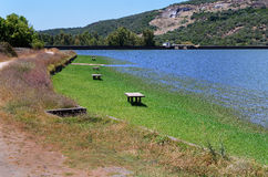 Landscape with picnic tables-horizontal Stock Photos