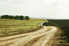 Landscape picture, road wallpape Stock Photography